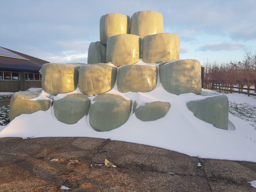 balen in sneeuw